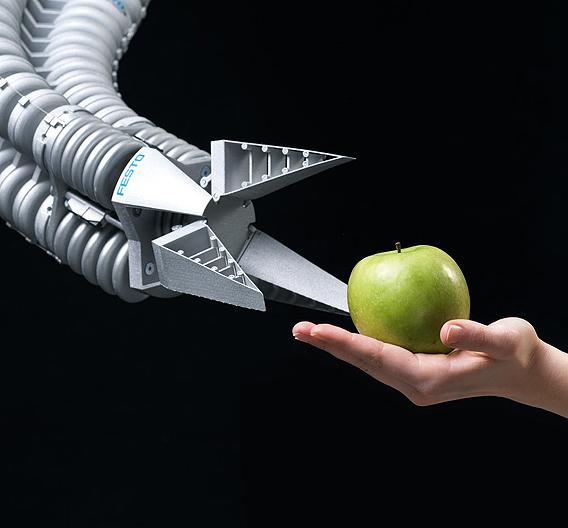 Die Greifzange ist elastisch und formt sich dem Apfel an...