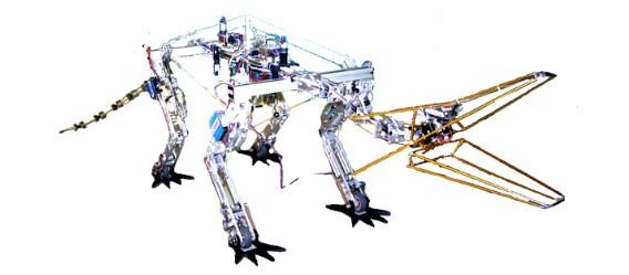 Das erste Drachen-Modell