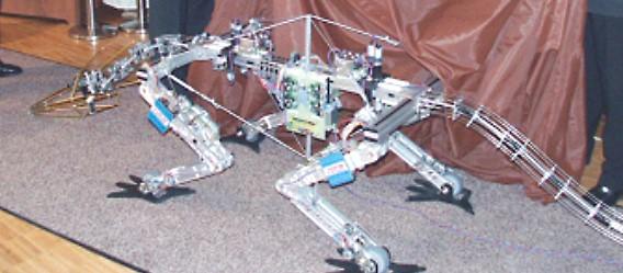 Auf der Further Messe wurde im Mai 2003 dieses erste Drachenmodell feierlich enthüllt.