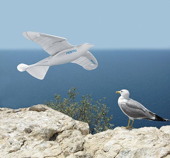 Vorbild des »SmartBird« ist die Silbermöwe.