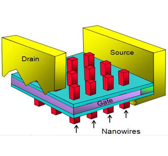 Bild 3: Aufbau eines Transistors mit Nanodrähten.