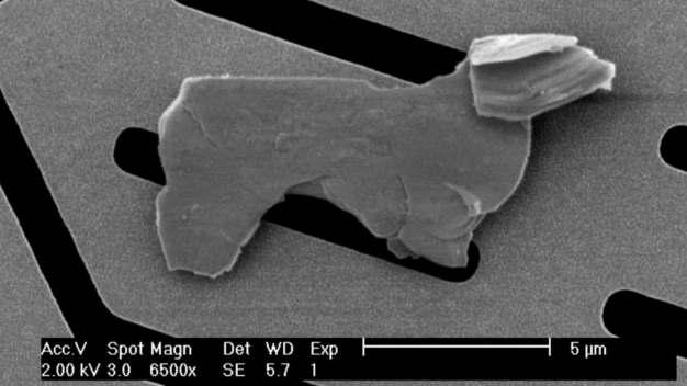 Das kleine Hündchen hat seinen Weg auf einen Chip in Joanna Grace V. De la Cruz Labor bei Analog Devices gefunden.