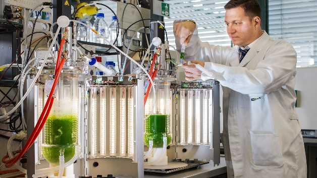 Professor Dr. Thomas Brück, Leiter des Fachgebiets Industrielle Biokatalyse der TU München am LED-Bioreaktor