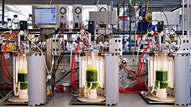 Laborbank mit LED-Biorekatoren