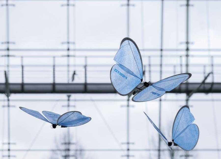 Ein externes und gut vernetztes Leit- und Monitoringsystem koordiniert die einzelnen Flugobjekte autonom und sicher im dreidimensionalen Raum. Die eingesetzte Kommunikations- und Sensortechnologie bildet ein Indoor GPS- System, das die Schmetterlinge kollisionsfrei und im Kollektiv steuert. Die Kombination aus integrierter Elektronik und ausgelagerter Kameratechnik mit einem Leitrechner ermöglicht Prozessstabilität. Um dem Flugverhalten ihres natürlichen Vorbilds so nahe wie möglich zu kommen, verfügen die künstlichen Schmetterlinge über eine integrierte Elektronik. Sie steuert die Flügel präzise und individuell an und setzt so die schnellen Bewegungen um.