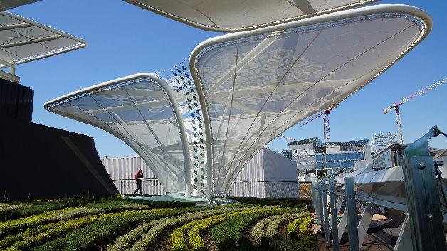 Zentrales Gestaltungselement sind die so genannten »Ideen-Keimlinge«, stilisierte Pflanzen, die aus der Ausstellung empor sprießen und ihr Blätterdach über dem Pavillon entfalten.