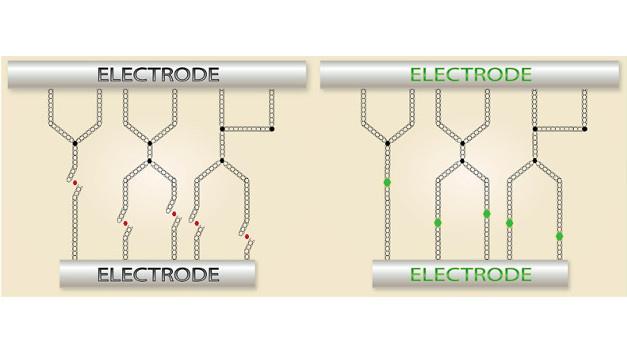 Die Abbildung zeigt, wie NRAMs funktionieren: Eine Carbon-Nanotube-Schicht (CNT-Schicht) wird zwischen zwei Elektroden angebracht. Wird Strom durch die CNTs geschickt, ziehen sie sich an, es entstehen Verbindungen, der Widerstand sinkt deutlich. Schickt man noch einmal Strom durch die CNTs, dann lösen sich die Verbindungen wieder. Damit wirkt die CNT-Schicht wie ein Schalter, der die Speicherzelle auf »0« oder »1« setzt.