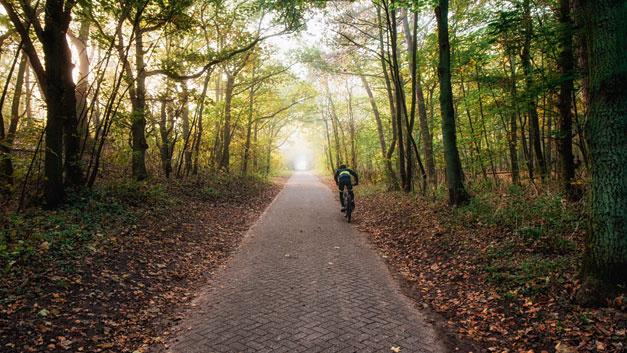 Bild 1. Ein Radfahrer ist im Längsverkehr für Sensoren schwer zu erkennen.