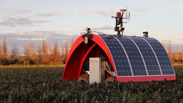 Vom Marienkäfer inspiriert ist die Ladybird-Plattform. Er ist batterie- und solarbetrieben und verfügt über verschiedene Erfassungssysteme, zum Beispiel Hyperspektral-, Thermo-, Infrarot-, Panorama-, Stereovision mit stroboskopischer Beleuchtung, LiDAR und GPS, mit denen sich die Eigenschaften von Pflanzen bewerten lassen.