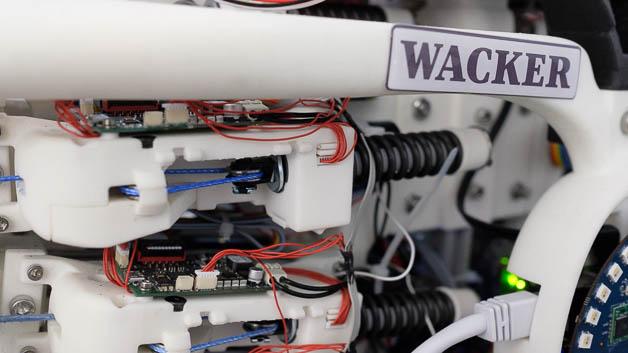 Die Gelenke des Roboters federn Stöße ab - so wie menschliche Gelenke. Dazu sind Federn eingebaut. Diese »nachgiebige« Roboter-Konstruktion wird als »soft robotics« erforscht.