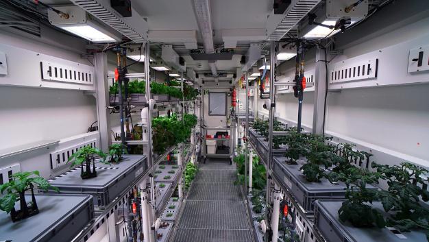 Das Regalsystem aus Aluminiumprofilen und passenden Verbindungselementen von item ist beidseitig angebracht und bietet Platz für je zwei Pflanzenboxen pro Regalebene.