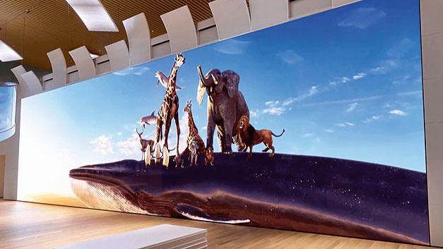 Bild 3. Wahrscheinlich heute das weltgrößte Display mit 783 Zoll (19,2 m × 5,4 m).