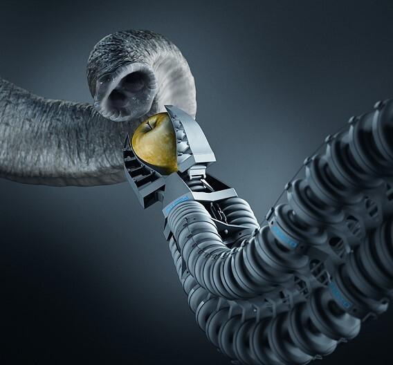 Vom Elefantenrüssel inspiriert ist der von Festo in Zusammenarbeit mit dem Fraunhofer IPA entwickelte »Bionische Handling-Assistent«.