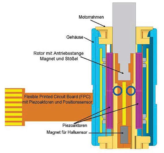 Bild 2. Querschnitt des Antriebs mit dem Aufbau des Piezomotors aus Bild 1 mit zwei Piezoelementen.