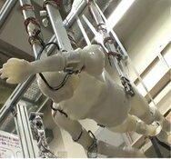 Tokyo Institute, Swumanoid in der Trockenübung