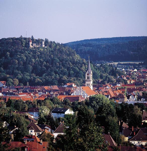 Die MSC Tuttlingen GmbH im südlichen Schwarzwald sucht Elektroingenieure. Doch wo andere Urlaub machen, zieht es diese offenbar nicht hin.