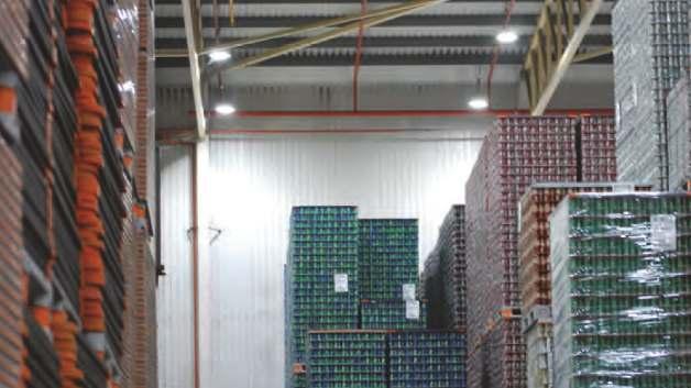 Der Austausch der 400-W-Quecksilberdampflampen durch 150-W-LED-Leuchten amortisiert sich für Getränkedosenhersteller Rexam nach bereits rund zwei Jahren.