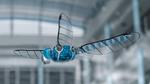 Hochintegriertes Modell simuliert Libellenflug