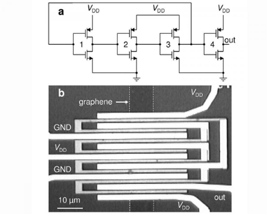Integrierter Gigahertz-Ringoszillator aus Graphen mit drei kaskadierten Inverter-Stufen und einem Entkopplungs-Inverter am Ausgang.
