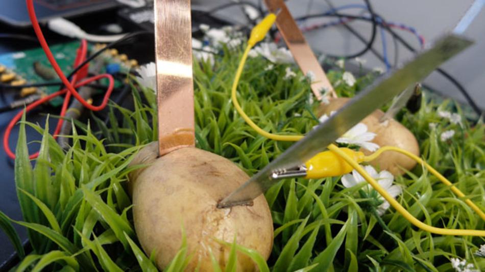 Keine aufgespießten Ostereier sondern eine Kartoffelbatterie. Mit dieser geringen Energie lässt sich der neueste digitale Isoltaor der iCoupler-Familie von Analog Devices betrieben.