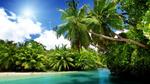 Elektronische Urlaubsgrüße sind beliebt
