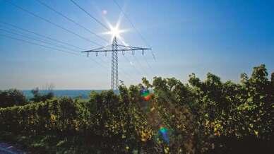 Die Pfalzwerke Netz AG versorgt als führender Energieversorger der Pfalz und des Saarpfalz-Kreises mit rund 15.000 km Leitungslänge ein etwa 6000 Quadratkilometer großes Netzgebiet.