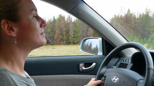 Für ablenkungsfreies Fahren muss die Sprachsteuerung noch optimiert werden.