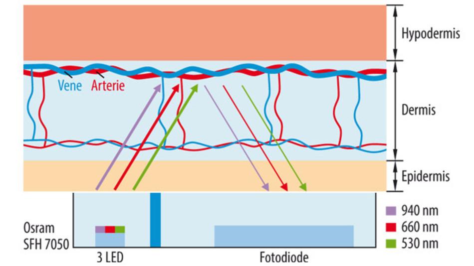 Bild 1: Grundprinzip der reflektiven, optischen Pulsmessung