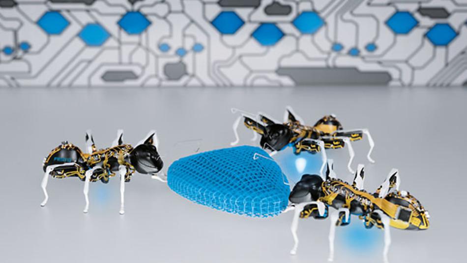Bionik von Festo: Künstliche Ameisen mit \