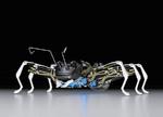 Von Ameisen und Supraleitung