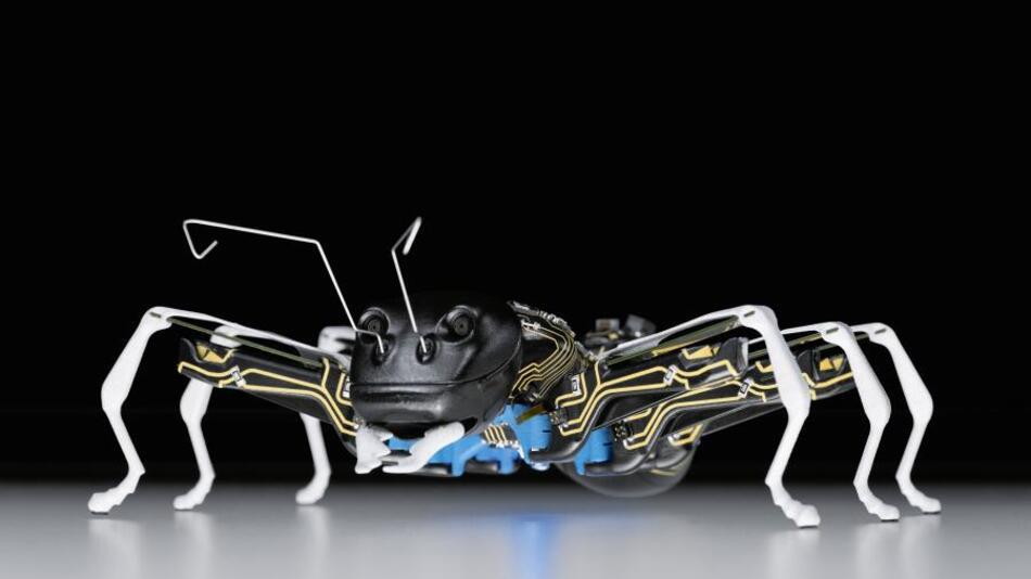 Die BionicANTs wurden in einem neuen Fertigungsverfahren hergestellt. Erstmals werden lasergesinterte Bauteile nachträglich im so genannten 3D-MID-Verfahren mit sichtbaren Leiterstrukturen versehen. Die elektrischen Schaltungen werden auf der Oberfläche der Bauteile angebracht, die dadurch konstruktive und gleichzeitig elektrische Funktionen übernehmen. Im Mundwerkzeug zum Greifen der Gegenstände und für die Beinbewegung sind in den BionicANTs piezokeramische Biegewandler im Einsatz. Die Piezoelemente lassen sich sehr präzise und schnell steuern und arbeiten zugleich energiearm und nahezu verschleißfrei – und das alles auf engstem Bauraum. Verformt sich der oben liegende Biegewandler, hebt die Ameise das Bein an. Mit dem darunter angebrachten Paar lässt sich jedes Bein exakt nach vorne oder hinten auslenken. Mit der 3D-Stereokamera im Kopf erkennen die Ameisen das Greifobjekt und können sich selber lokalisieren.