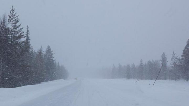 Bei solchen Winterbedingungen sind funktionierende aktive und passive Sicherheitssysteme ein Muss.