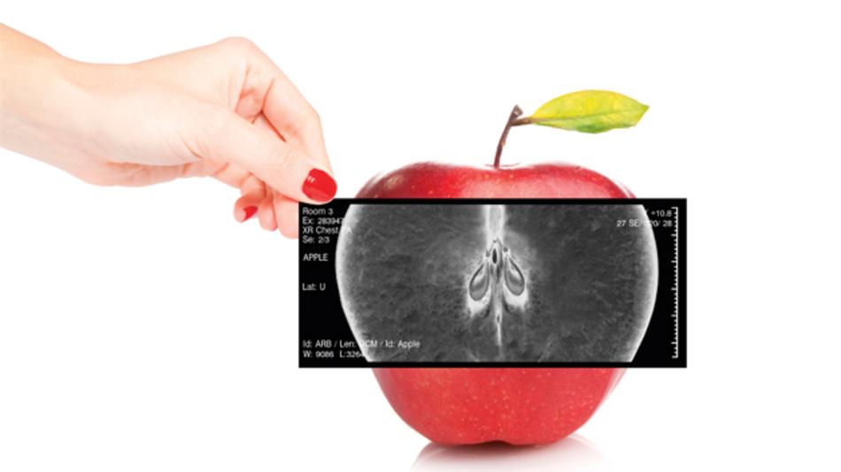 Mit organischer Elektronik lassen sich neuartige Röntgendetektoren verwirklichen.