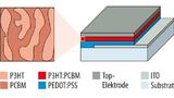 Fotodiode mit organischen Halbleitern