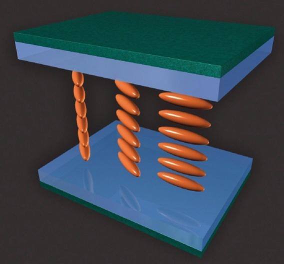 Bild 2: Horizontal und vertikal drehende Flüssigkristalle