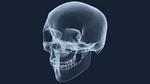 MRT in der Zahnmedizin: Ist das Röntgenbild bald passé?