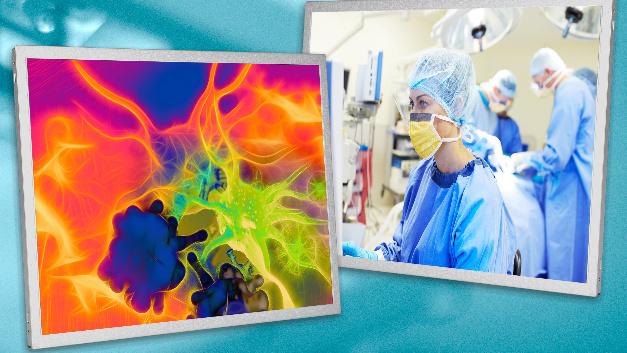 Das hohe Kontrastverhältnis von 2500:1 prädestiniert Innolux' drei 15-Zoll-TFT-Displays im Vertrieb von MSC Technologies für Anwendungen in der Medizintechnik.