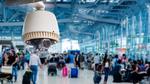 Fluggäste wollen Kameraüberwachung und Ganzkörperscanner