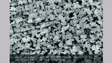 Bild 2. Die Oberfläche einer geätzten Anodenfolie hat auf die Spannungsfestigkeit großen Einfluss.