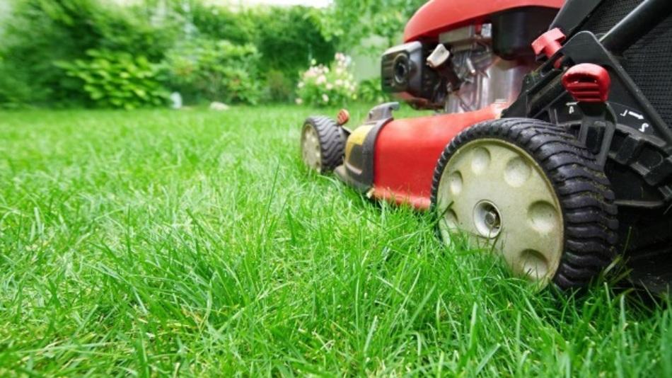 Unter anderem auf Gartengeräte bezieht sich die Kooperation.