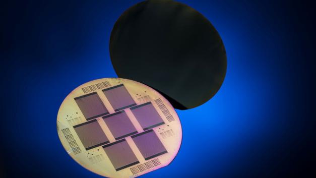 Die POLO-Kontakte für beide Polaritäten befinden sich auf der Solarzellenrückseite.