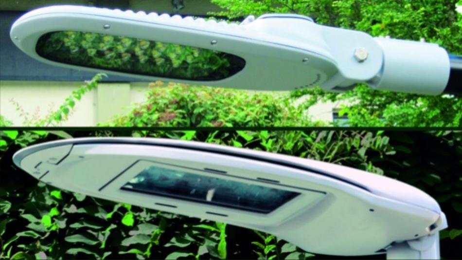 LED-Lampenköpfe der euroLighting Serien Sirius I-III mit treiberloser AC-Technik.