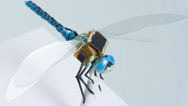 """Maßstabsmodell einer Libelle mit dem von Draper entwickelten """"Rucksack""""-System."""