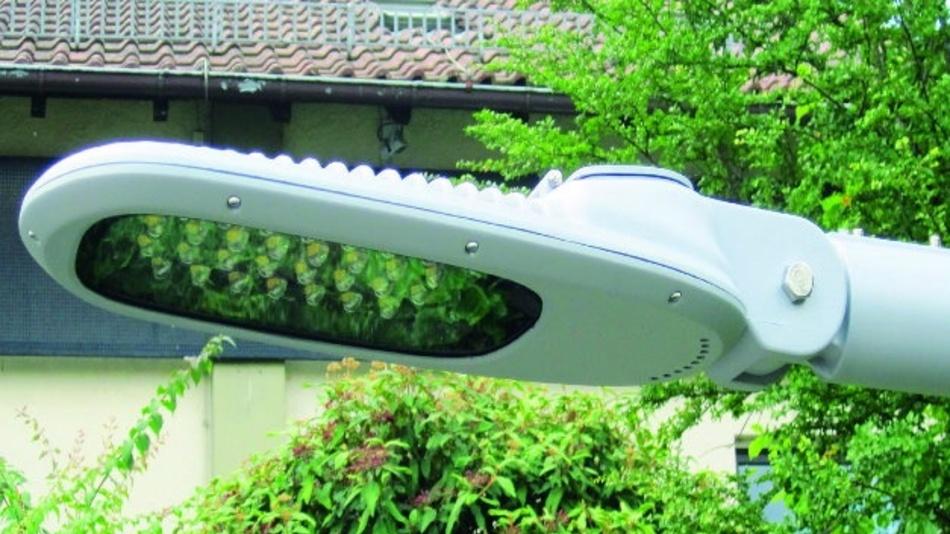 Gleich acht neue LED-Retrofit-Lampenköpfe für die Straßenbeleuchtung kommen von euroLighting. Die Serie Sirius I, II und III  ist erhältlich in 30, 40, 60, 80, 120 und 160 W. Das Besondere jedoch ist die treiberlose AC-Technik. Das bedeutet den Verzicht auf konventionelle Schaltnetzteile. Die treiberlose AC-Technik kommt mit wenigen Bauelementen aus, sodass die gesamte Treiberelektronik zusammen mit den Leuchtdioden auf der Platine untergebracht werden kann. Mit einem Power-Faktor von 0,98 und einem integrierten Überspannungsschutz von 10 kV eignen sich die Straßenlampen für Masthöhen von bis zu zwölf Metern und Mastabstände zwischen 30 und 40 Metern. Optional lieferbar ist eine autarke, variable Nachtabsenkung. Die Lampen werden mit einem serienmäßigen acht Meter langen Anschlusskabel geliefert und sind IP65-konform. Sie arbeiten bei Temperaturen zwischen -40 und +50 °C, ihr flaches Gehäuse bietet eine geringe Windangriffsfläche, und aufgrund ihrer Bauweise sind die Lampen auch gegen mechanische Erschütterungen völlig unempfindlich.
