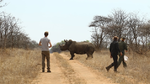 Sigfox, Nashorn-Tracking