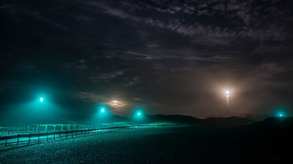Dank ihres speziellen Lichtspektrums stören die blaugrünen LED-Leuchten an den Strandaufgängen die heimischen Watt- und Wiesenvögel deutlich weniger als weißes Licht mit seinem Rotanteil.