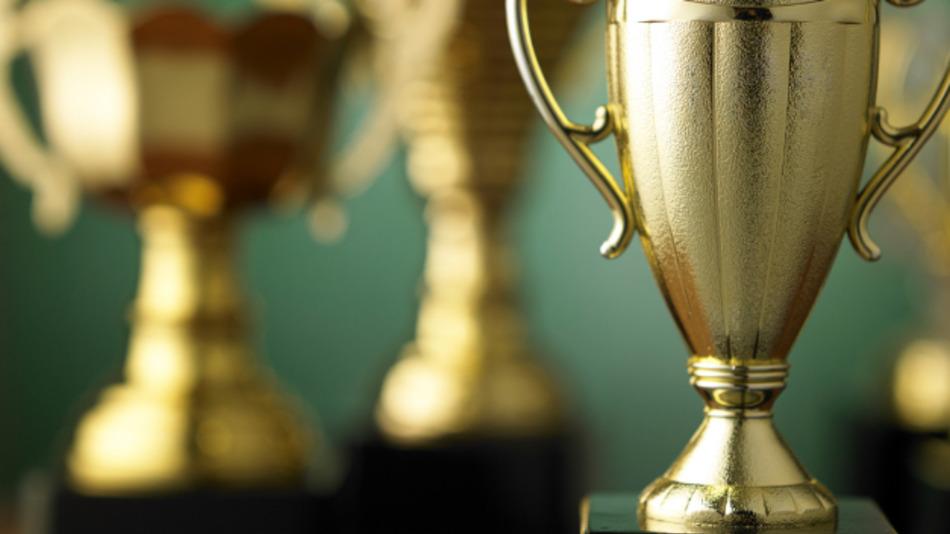 Die Teilnahmefrist für den 2. Stevie Award for Great Employers läuft noch bis zum 5. Juni 2017.