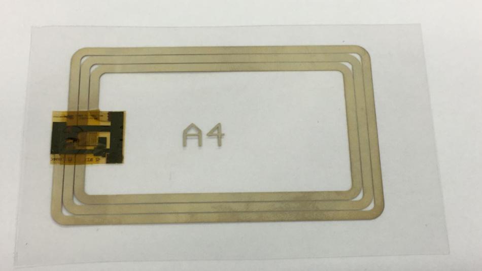 Plastik-12-Bit-RFID-Tag und Lesesystem mit Siebdruck-Antennen.