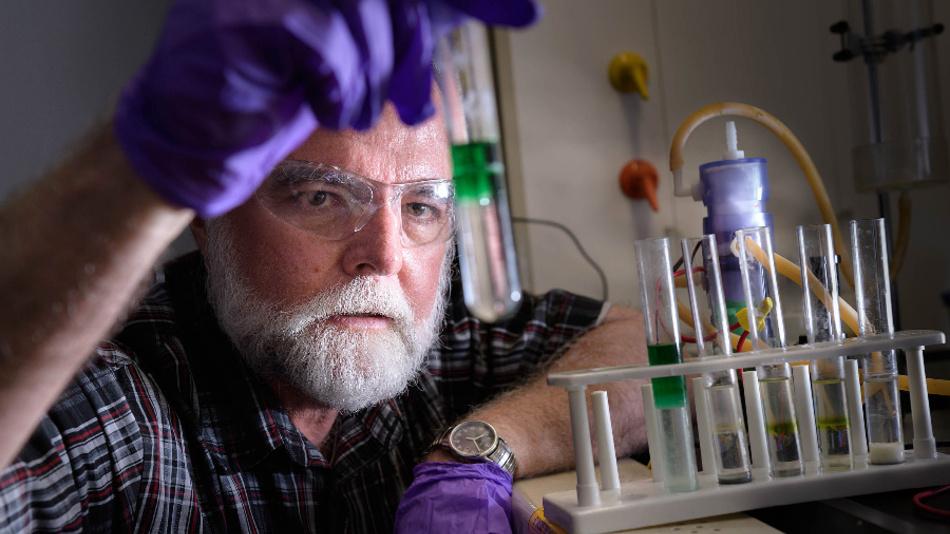 Herr Prof. Cushman in seinem Labor.