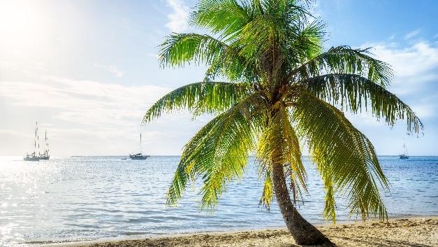 Strand und Arbeitsrecht - wie passt das zusammen?